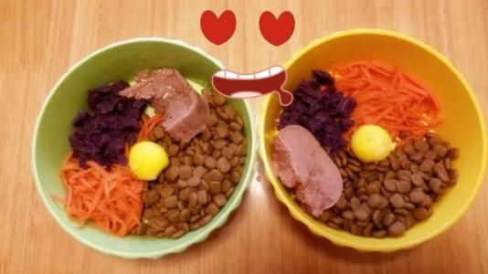 How To Make Dog Food At Home